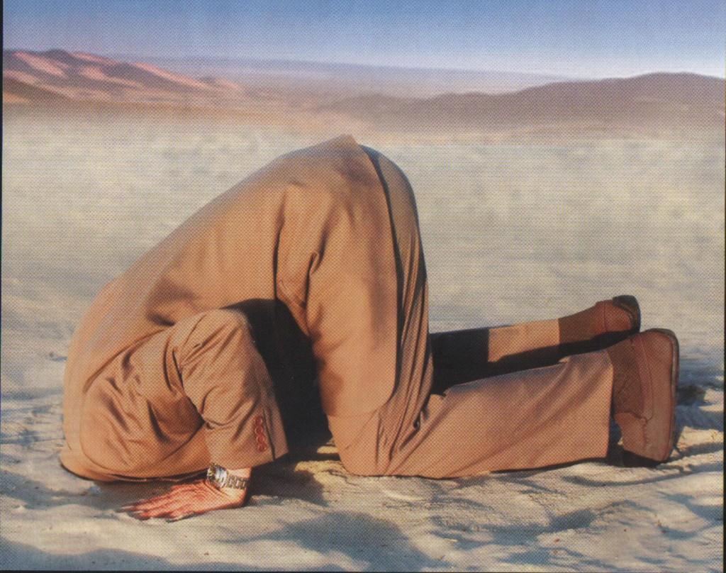 glava-u-pijesku